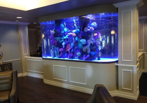 1200 Gallon Race Track with Faux Reef