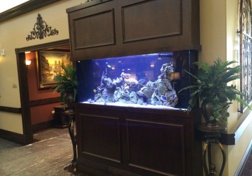 300 Gallon Living Reef Room Divider