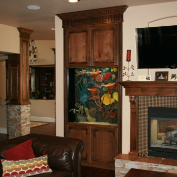 In Wall Saltwater With Faux Reef