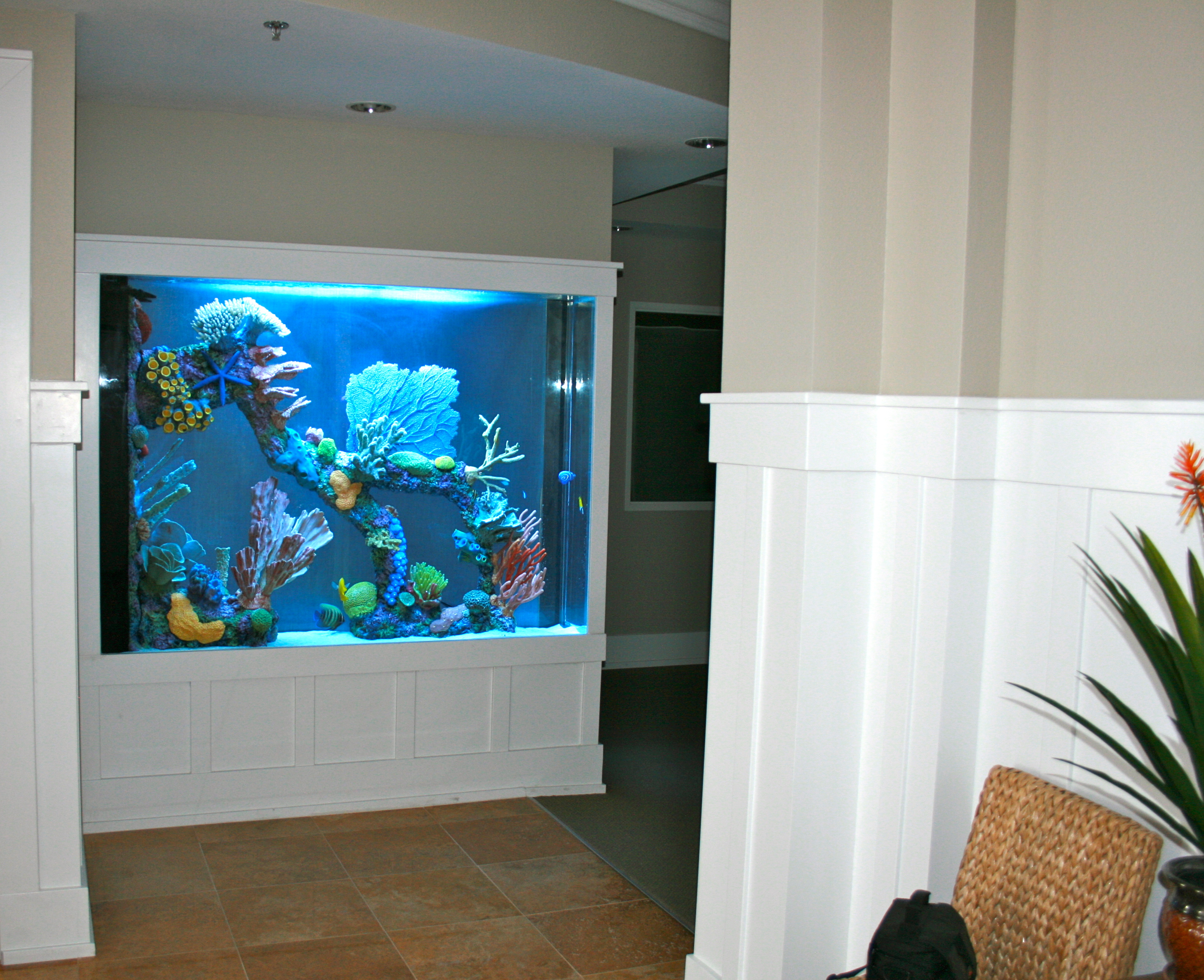 600 Gallon Marine Aquarium Room Divider With Faux Reef