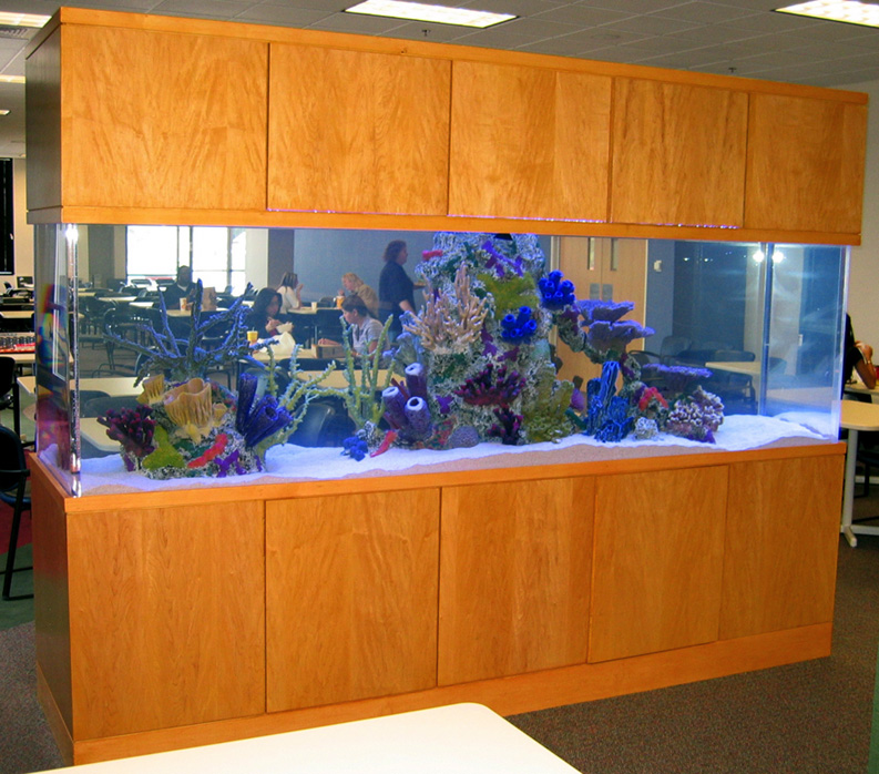 800 Gallon Marine Aquarium Free-Standing With Faux Reef