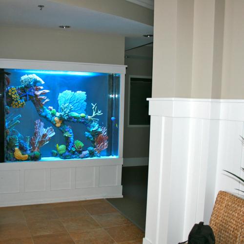 600 Gallon Marine Aquarium Room Divider With Faux Reef Aquarium Maintenance Las Vegas