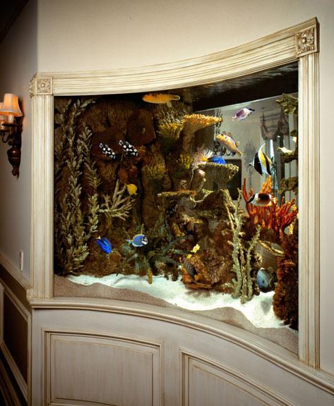 400 Gallon Marine Aquarium Concave Radius Front
