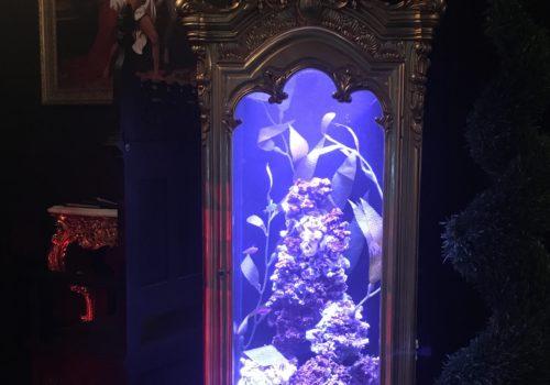 Antique Curio Cabinet Aquarium