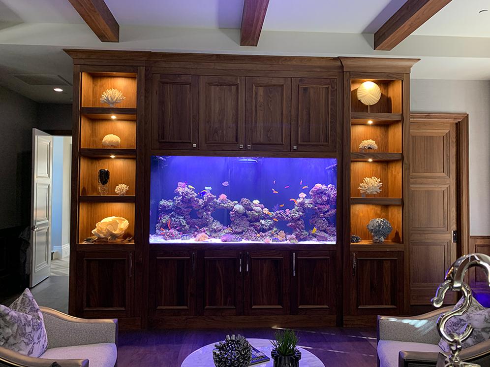 570 Gallon Living Reef